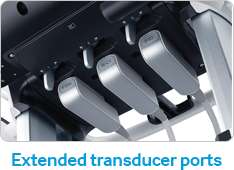 Extended transducer ports